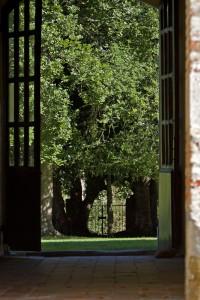 Abbaye Escaladieu, parcs et jardins